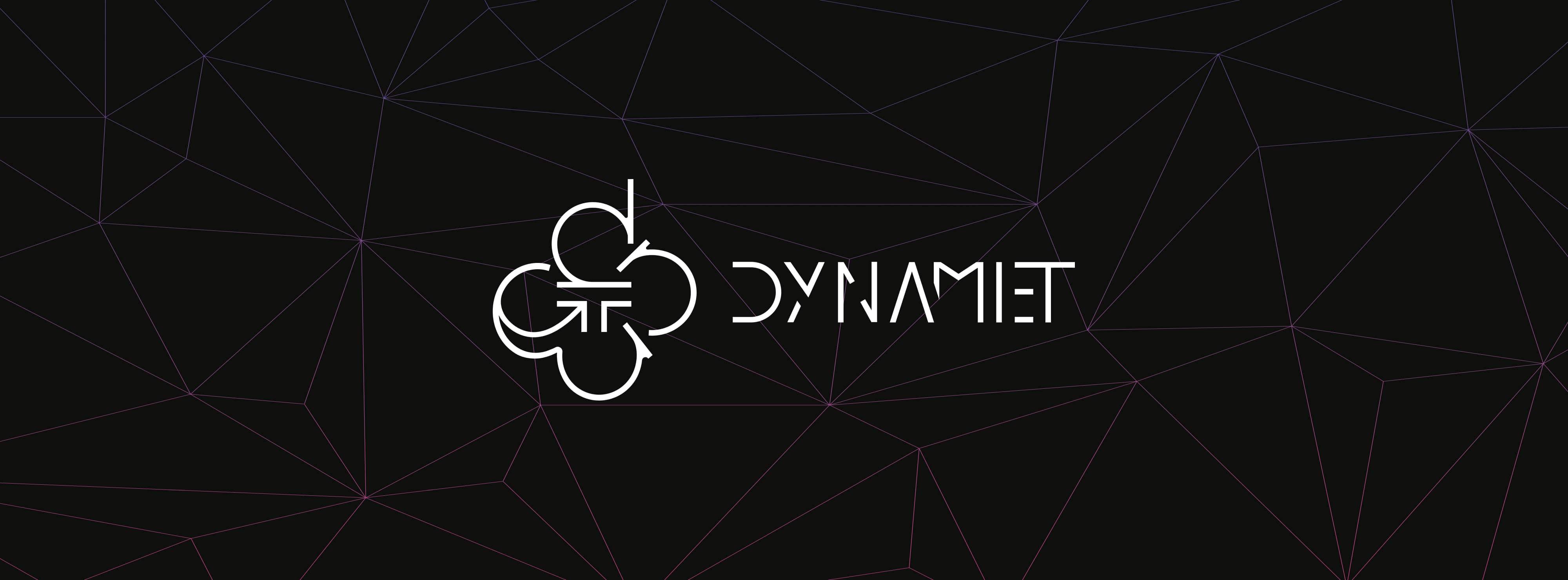 2dce29755fa Home - Dynamiet